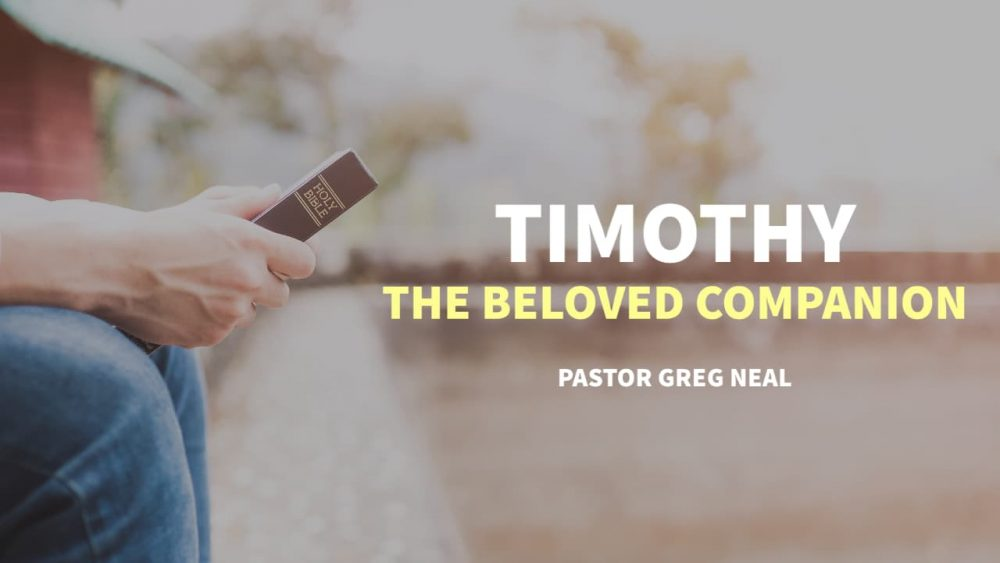Timothy, The Beloved Companion Image